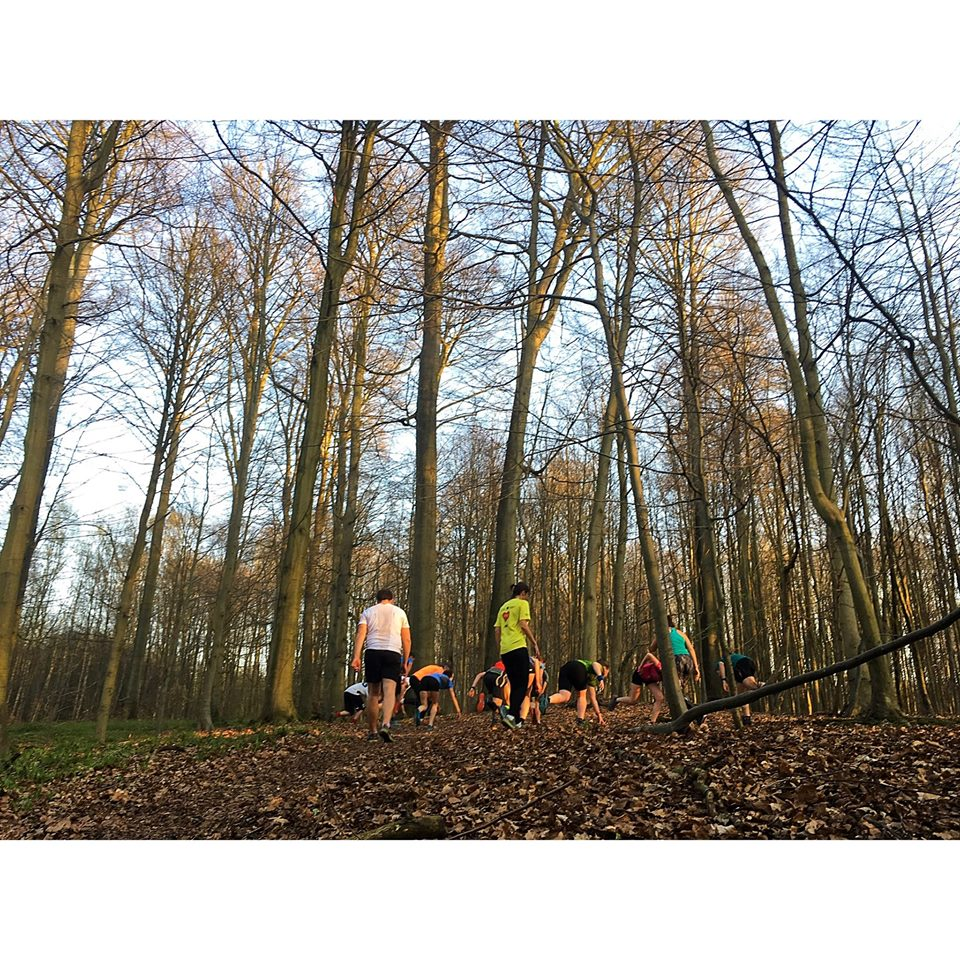 Conférence & Trail - Renforcement musculaire en Trail #1
